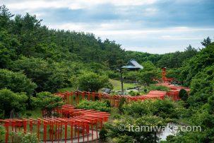 元乃隅神社(元乃隅稲成神社)へ!123基の鳥居を抜けると崖と海!「日本の最も美しい場所31選」は伊達じゃない